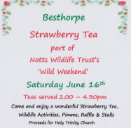 Strawberry Tea web